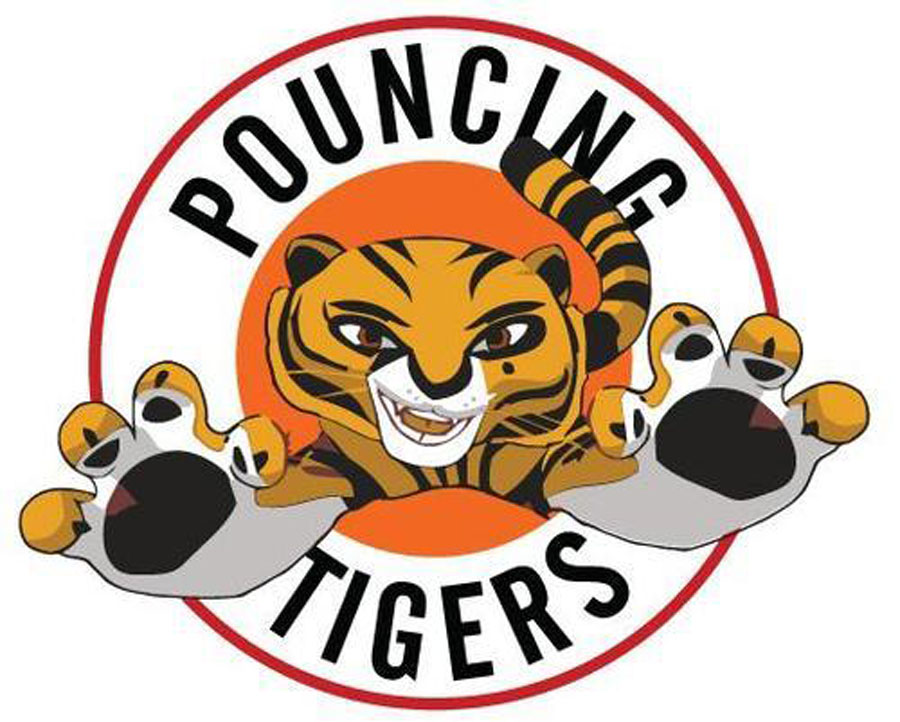 Pouncing Tigers Martial Arts Camps