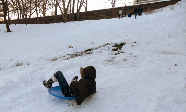 Snow Day! Harlem Sledding Hills
