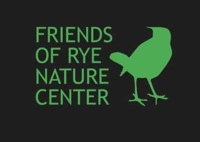 Rye Nature Center – in-person camp!